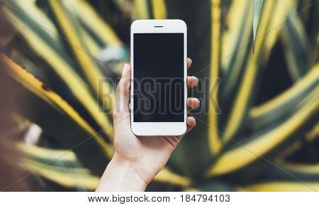 Hipster photograph on digital smart phone or technology mock up of blank screen. Girl using mobile on yellow and green flowers background close. Hands holding gadget on blurred backdrop front view