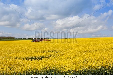 Crop Sprayer And Oilseed Rape