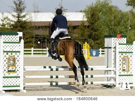 A horse rider will cross the barrier.