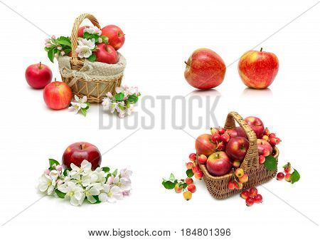 Ripe red apples on a white background. Horizontal photo.