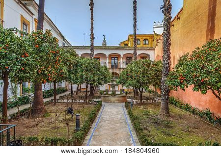 Courtyard with orange tee in Alcazar of Seville Spain