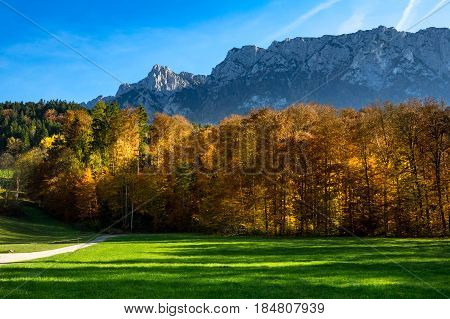 Autumn mountain landscape with fall forest and mountain range in the background. Austria Tirol Tyrol