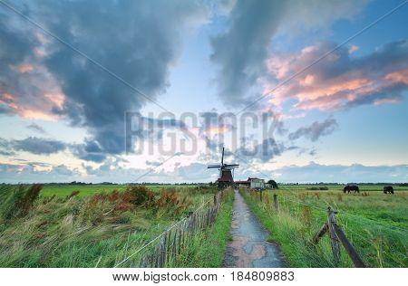 morning on Dutch farmland with windmill Holland