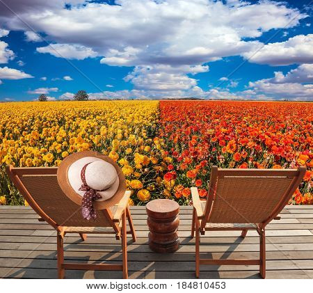 Pair of convenient  chaise lounge next to flower field. Elegant women's straw hat hanging on a deck chair. Concept of recreational tourism