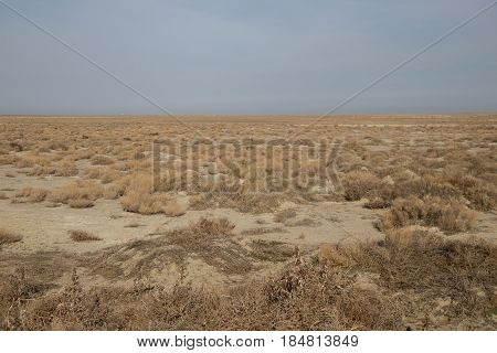 The vast expanses of the Kazakh dry steppes and semi-deserts