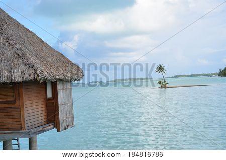 A over water hut and lonley palm tree island in Bora bora