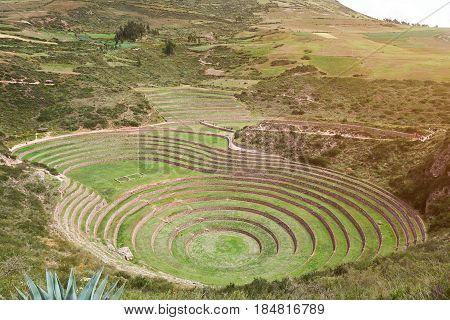 Sacred Valley  Moray In Peru Cusco