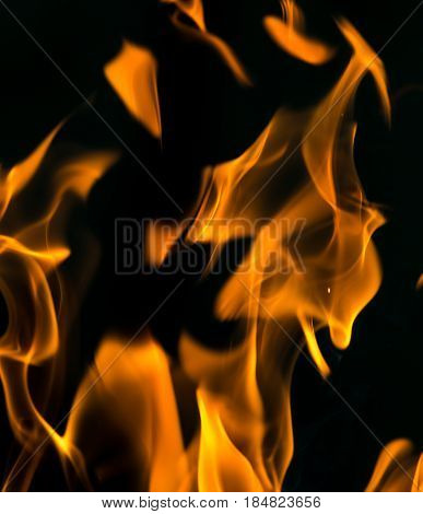 fire on black close up abstract background . A photo