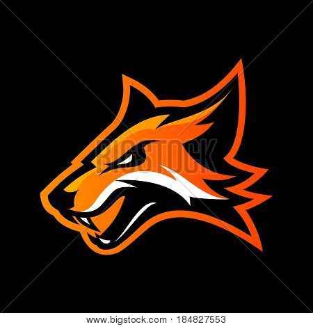 Furious fox sport club vector logo concept isolated on black background. Modern professional team badge mascot design. Premium quality wild animal athletic division t-shirt tee print illustration