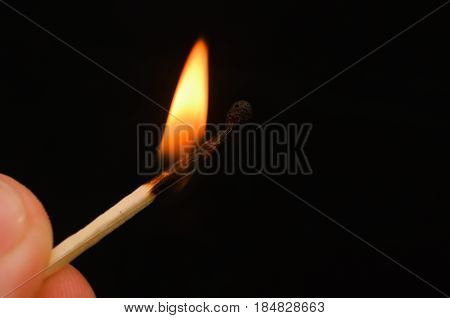 Matches with multi-colored heads burn and do not burn.