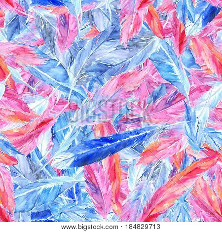 Watercolor colorful pink blue bird feather seamless pattern texture background