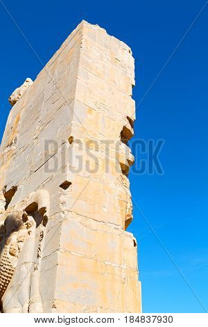 In Iran          Persepolis
