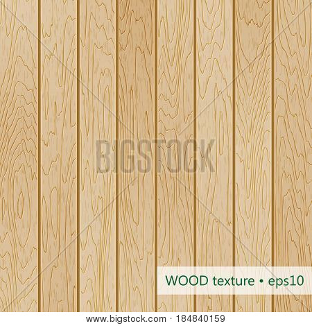 Color wood texture. Vector illustration. Wooden background