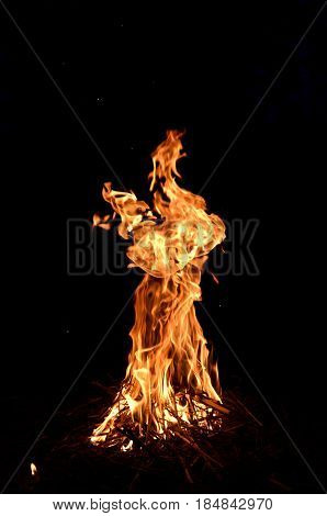 A high and narrow flame of burning dry brushwood.
