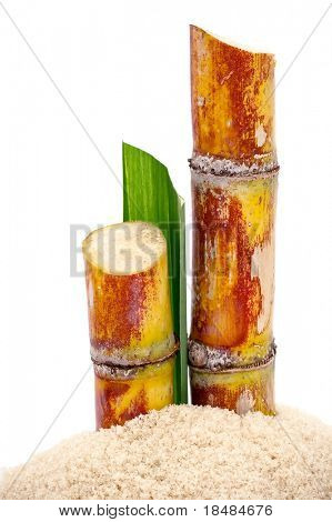 Pieces of sugarcane on a pile of sugar on white background
