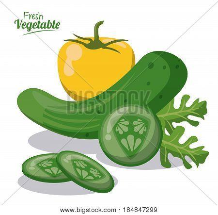 fresh vegetables cucumber lettuce pepper image vector illustration