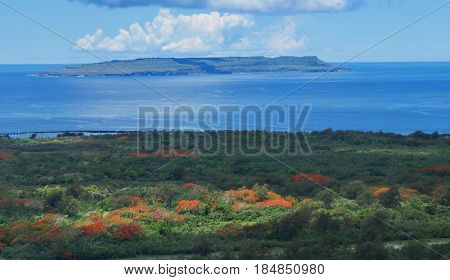 Tinian with flame trees Flame trees in bloom add colors to the lush greenery of Tinian. In the distance is the Goat Island.
