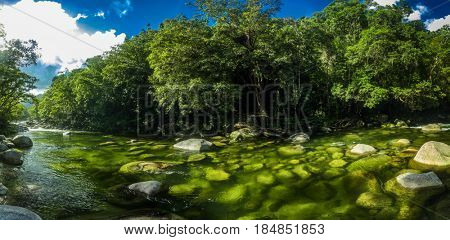 Mossman Gorge - river in Daintree National Park, north Queensland, Australia