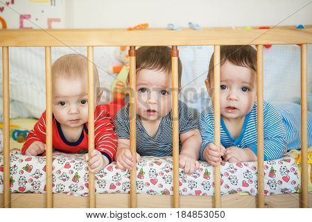 Portrait of newborn triplets in the bed