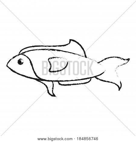 blurred silhouette fish aquatic animal vector illustration