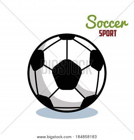 soccer sport ball isolated icon vector illustration design