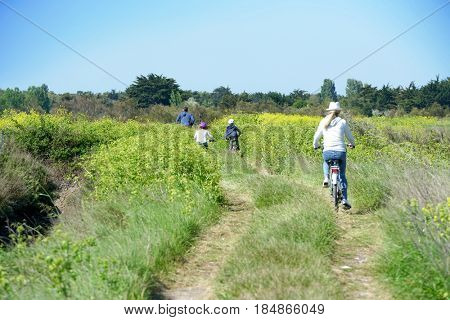Back view of family riding bicycles on country track