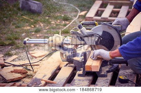 Work with a circular saw by sawing a tree.