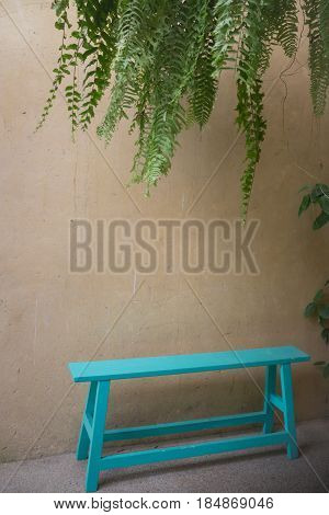 Vintage Green Bench And Hanging Plant stock photo