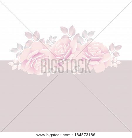 pale rose boquete card template vector illustration