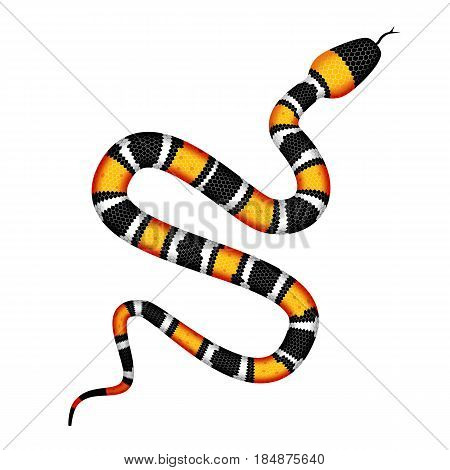 Vector 3d Illustration of Coral Snake or Micrurus Isolated on White Background. Serpent with Orange and Black Stripes