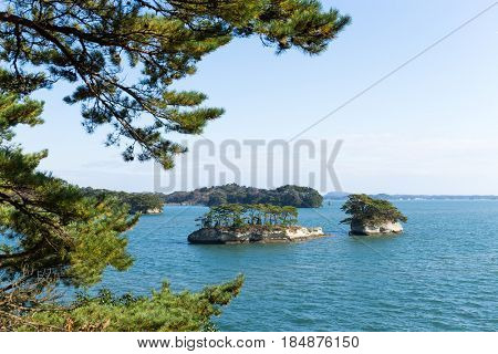 Japanese Matsushima with sunshine