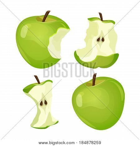 Stages of whole and bitten apple core isolated on white background vector illustration. Process of eating tasty organic fruit