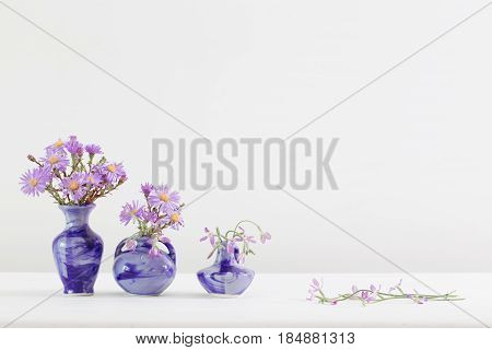Aster amellus bouquet in blue vases on white background