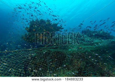 Illegal Fishing In The Marine National Park