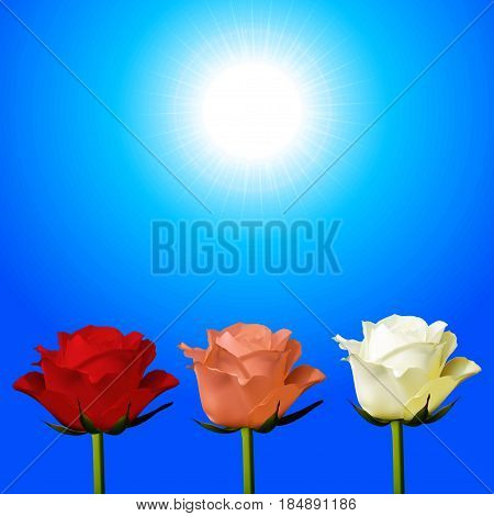 3D Illustration of Trio of Red Pink and White Roses Over Sunny Sky Background