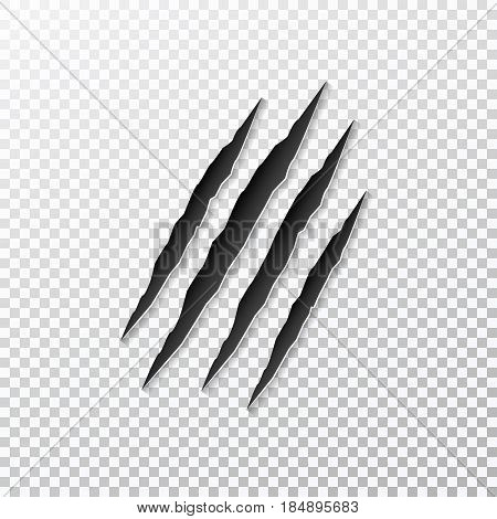 Claws scratching animal on background. Vector illustration.
