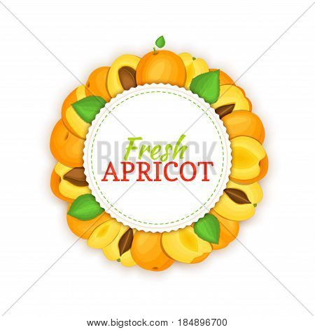 Round frame composed of ripe apricots fruit. Vector card illustration. Circle apricot label. Peach fresh fruits for packaging design of healthy food, jam, fruit marmalade, juice, smoothies, detox diet