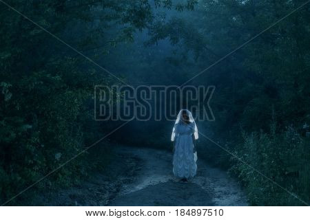 the bride's ghost in the night forest