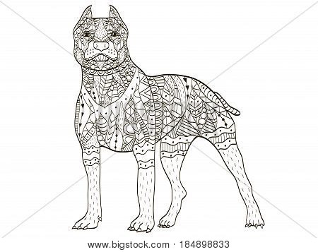 American Pit Bull Terrier animal coloring book for adults vector illustration. Anti-stress coloring for adult. Zentangle style dog breed. Black and white lines. Lace pattern