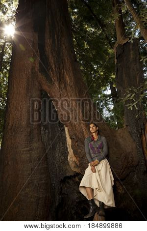 Woman standing on roots of large tree
