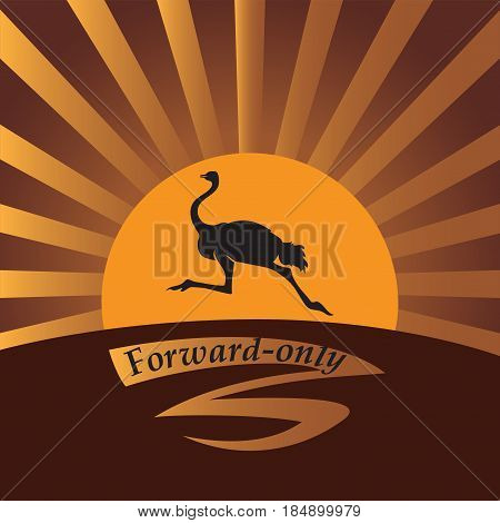 Ostrich in the sun. Vector image. Logo, icon. Design for banner, poster, illustratie book, print on fabric or paper.