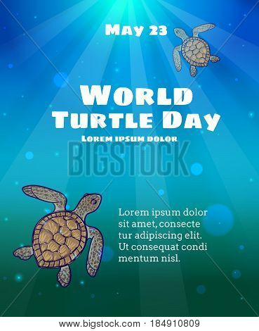 World Turtle Day, May 23