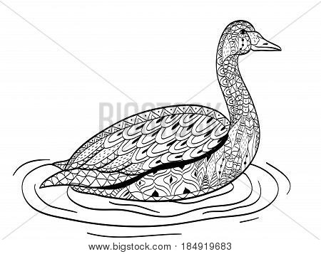 swan swims on the water coloring book vector illustration. Anti-stress coloring for adult. Zentangle style bird. Black and white lines. Lace pattern