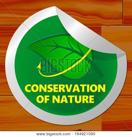 Conservation Of Nature Meaning Conserve 3D Illustration