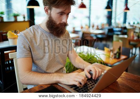 Handsome bearded financial manager sitting in lovely small coffeehouse and preparing annual accounts on laptop, waist-up portrait