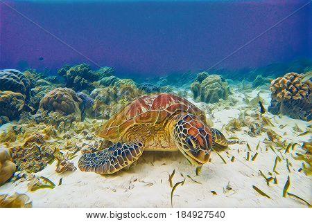 Sea turtle in blue sea. Tropical seashore nature digital illustration. Tortoise in wild nature. Exotic island seashore animal. Snorkeling underwater scene. Marine reptile green turtle eating seaweed