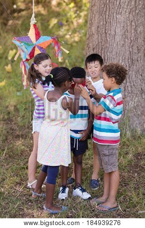 Group of friends blindfolding boy on grassy field at campsite