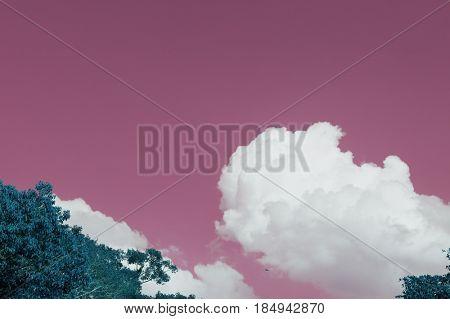 Negative color of cloudscape in nature