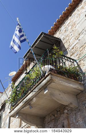 white cat and greek flag on balcony on old house in Greek town of kardamili on peloponnese on sunny day with blue sky