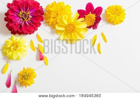 red and yellow flowers on white background